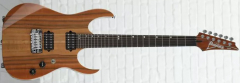 Ibanez_MSM1_1a