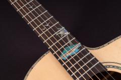 Washburn-Bella-Tono-Allure-SC56S-6